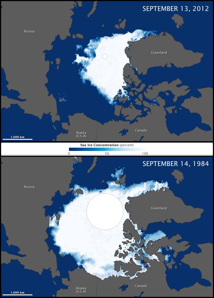 Die dramatischen Konsequenzen der globalen Erderwärmung für das arktische Eis.